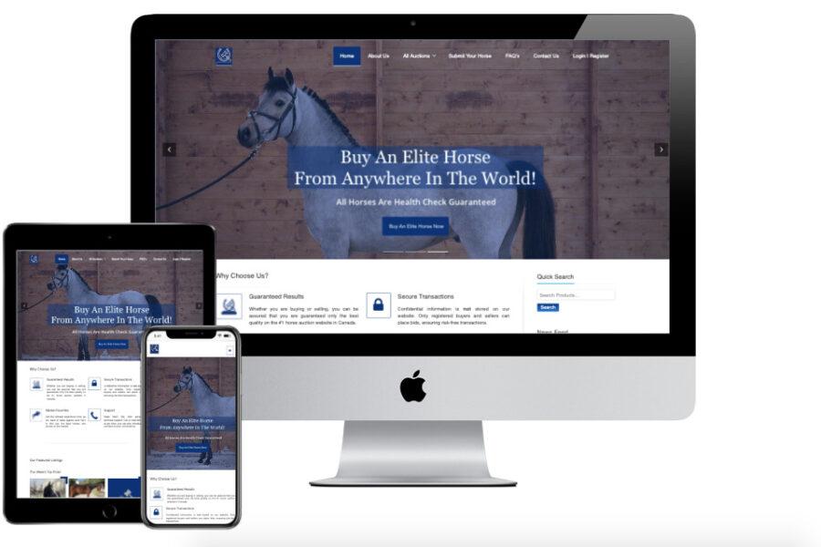 Hutter Sport Horse Auctions responsive Webs TT 1